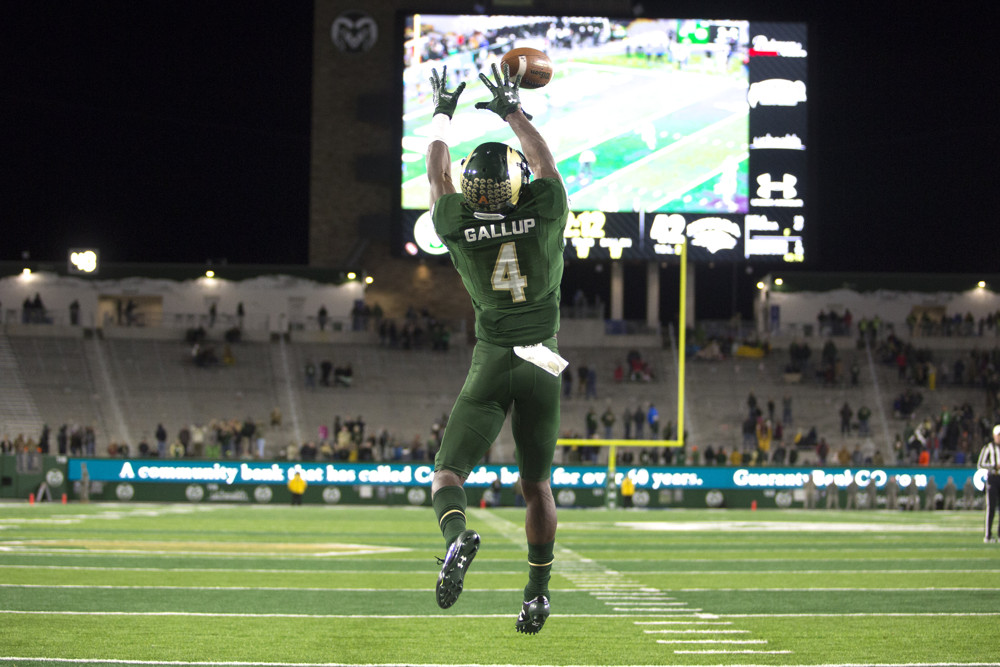 Michael Gallup Csu